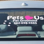 Pets Car2