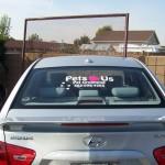 Pets car1